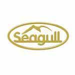 Seagull launches JRC ECDIS training module