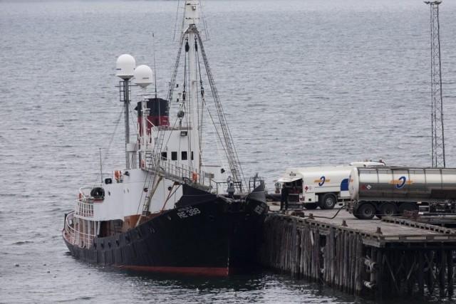 Πρόστιμο ενός εκατομμυρίου δολαρίων για παράνομη φαλαινοθηρία