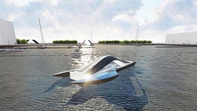 """Ένας καρχαρίας """"σαρώνει"""" τα ύδατα σε λιμάνια και ωκεανούς"""