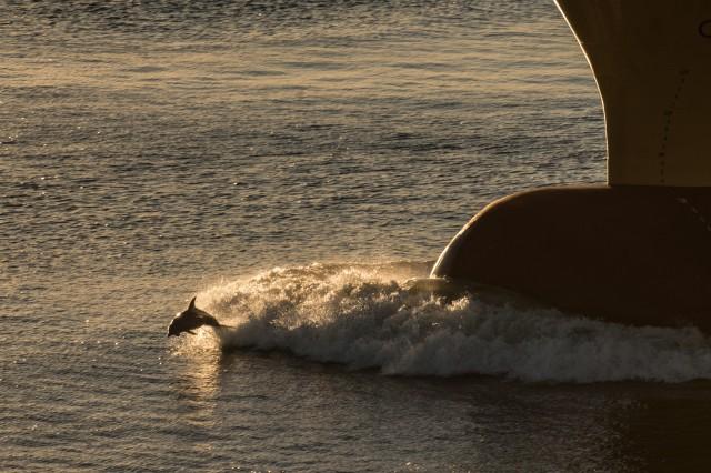 Η INTERMEPA τιμά την Παγκόσμια Ημέρα Ωκεανών