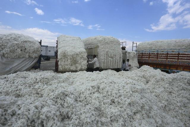 Σε άνοδο οι εξαγωγές βαμβακιού από την Ινδία
