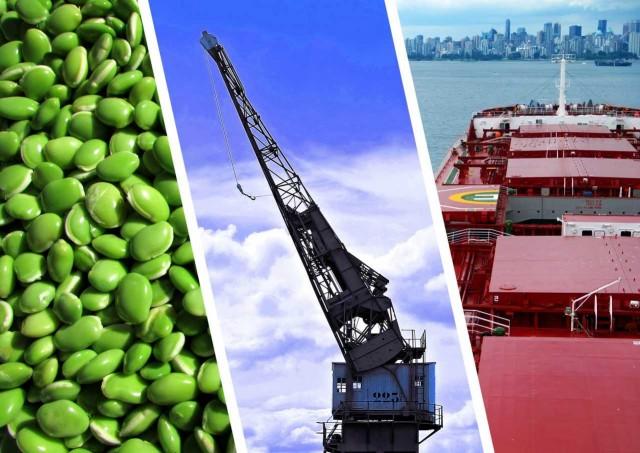 Βραζιλία: Εθνικό πλάνο για την αύξηση της παραγωγής και των εξαγωγών οσπρίων