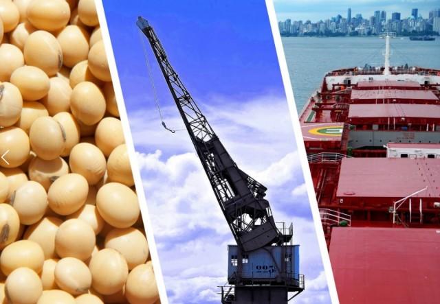 Βραζιλία: Σόγια και σιδηρομετάλλευμα στην κορυφή των εξαγωγικών προϊόντων
