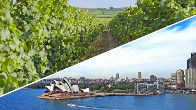Αυστραλία: Οι Κινέζοι λάτρεις του κρασιού απογειώνουν τις εξαγωγές