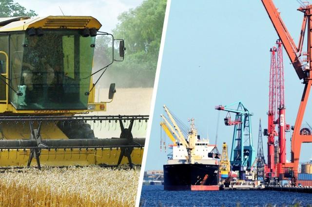 Το ουκρανικό σιτάρι «αργοπεθαίνει» ελέω ξηρασίας