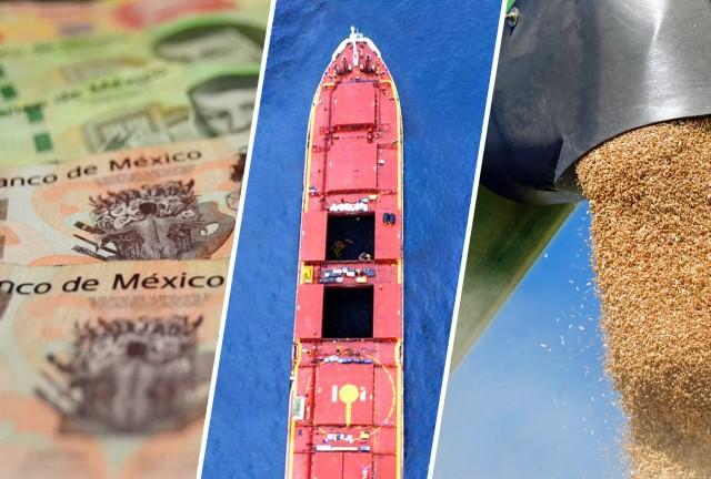Το Μεξικό αναζητά νέες πηγές εισαγωγών σιταριού