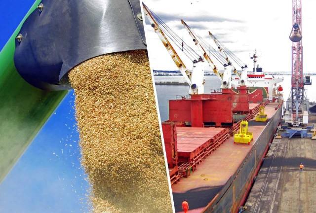 Κίνα: Αισθητά μειωμένες οι εισαγωγές σιτηρών