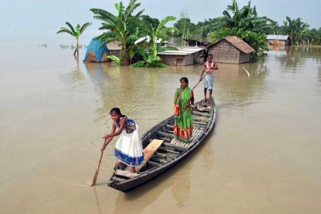 Ινδία: Οι πλημμύρες απειλούν την παραγωγή καφέ