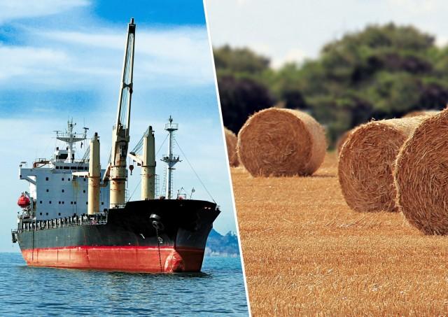Κρίση βιώνει η παγκόσμια προσφορά σιτηρών παρά τις απέλπιδες προσπάθειες της Κίνας