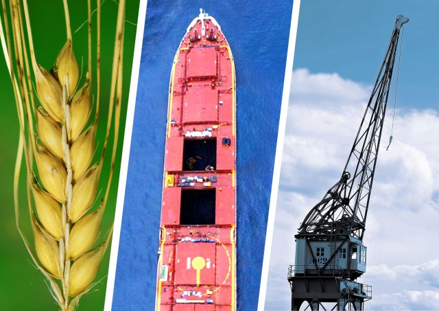Βραζιλία: Συγκρατημένες οι εκτιμήσεις για τις γεωργικές συγκομιδές