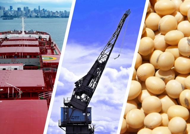 Σόγια: Στην Κίνα η μερίδα του λέοντος των εξαγωγών από την Βραζιλία