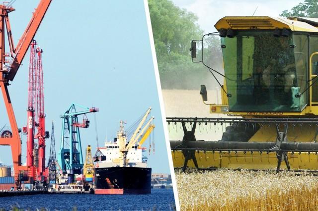 Νιγηρία: Ενισχυμένες οι εισαγωγές σιταριού ελέω μειωμένης παραγωγής