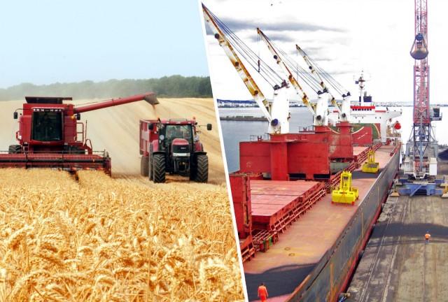 Σημαντική αύξηση για τις εξαγωγές σιτηρών από τους ρωσικούς λιμένες