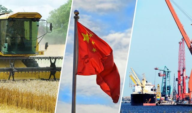 Κίνα: Προς αύξηση των εισαγωγών σιταριού