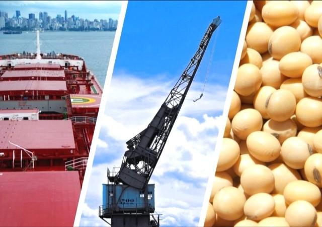 ΗΠΑ- Κίνα- Αργεντινή: Το τριγωνικό ντόμινο γύρω από τη σόγια
