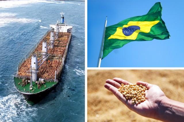 Βραζιλία: Πως διαμορφώθηκαν οι εξαγωγές αγροτικών προϊόντων