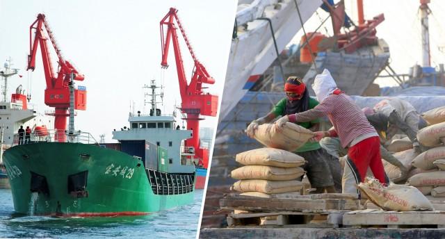 Κίνα: Σε καθοδική τροχιά οι εισαγωγές σόγιας