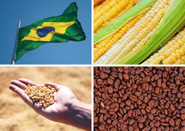 Βραζιλία: Σόγια και καφές VS καλαμπόκι και ζάχαρη.. σημειώσατε 1