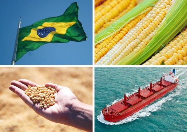 Βραζιλία: Συνεχίζει ακάθεκτη τις εξαγωγές σόγιας και καλαμποκιού