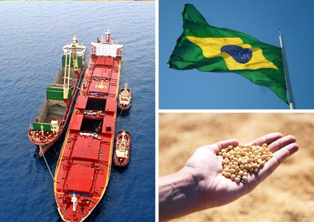 Κάμψη στις εξαγωγές σόγιας της Βραζιλίας