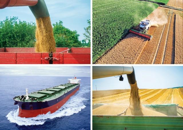 Στα ίδια επίπεδα με πέρυσι το παγκόσμιο εμπόριο σιτηρών