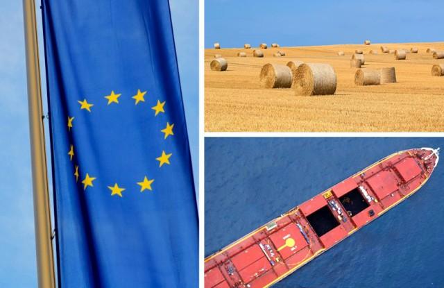 Ε.Ε.:Πώς διαμορφώνονται οι εξαγωγές σιταριού