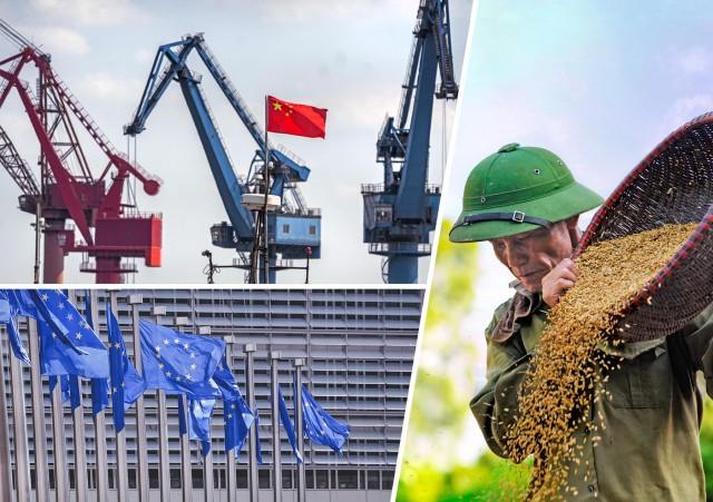 Καμπότζη: Αύξηση των εξαγωγών ρυζιού προς την Κίνα μετά τις κυρώσεις της ΕΕ