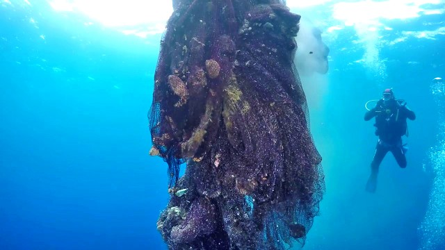 BlueCycle: ένα πρωτοπόρο πρόγραμμα για την ανακύκλωση των θαλάσσιων πλαστικών απορριμμάτων