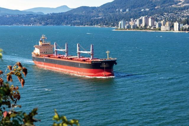 H «επάνοδος» των bulk carriers