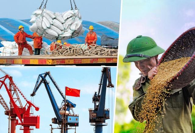 Καμπότζη: Aύξηση για τις εξαγωγές ρυζιού