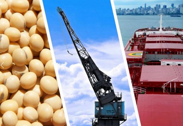 Σόγια: Οι ΗΠΑ «χάνουν» την αγορά της Κίνας