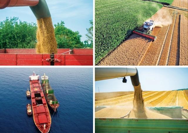 FAO: μείωση για τις τιμές εμπορευμάτων διατροφής