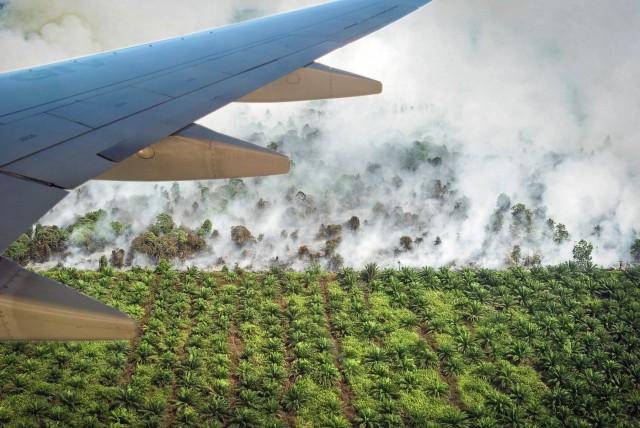 Μαλαισία και Ινδονησία αντιμετωπίζουν τη δίνη των πυρκαγιών