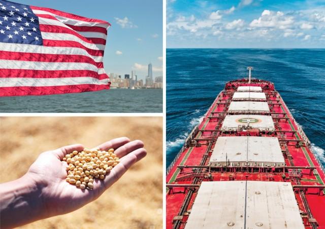 Σόγια: Φρένο στις αμερικανικές εξαγωγές το α΄ εξάμηνο