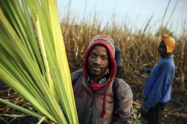 Ζάχαρη: Στροφή της Κένυας στις εισαγωγές λόγω χαμηλής παραγωγής