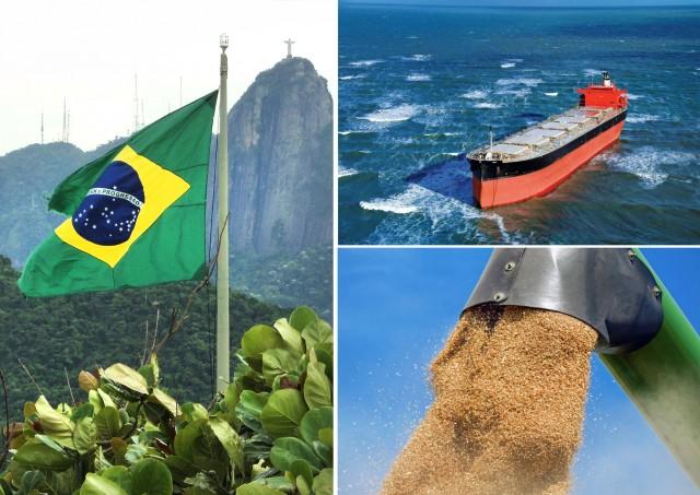 Βραζιλία: Υψηλές βλέψεις για τις εξαγωγές σόγιας
