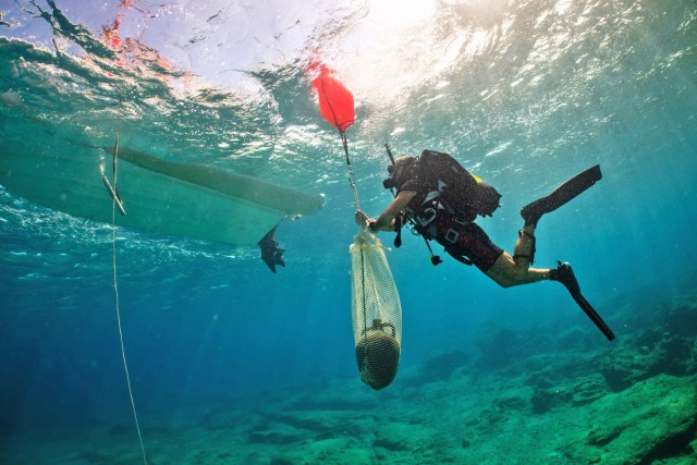 Τα πέντε ναυάγια της Κάσου που συγκλονίζουν τους αρχαιολόγους