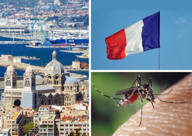Ζίκα: Επιβεβαιωμένα κρούσματα στη Γαλλία