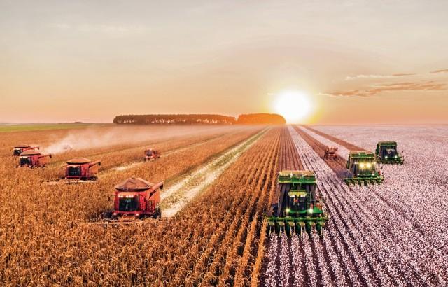 Σιτηρά: Οι εκτιμήσεις για παραγωγή, κατανάλωση και εμπορία