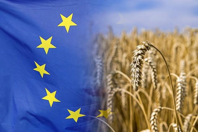 Σιτάρι: Η ΕΕ προμηθευτής της Κίνας