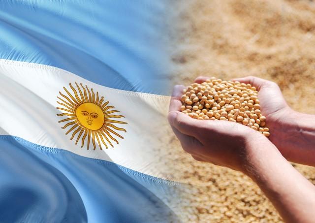 Αργεντινή: Οι ευνοϊκές καιρικές συνθήκες, σύμμαχος για την παραγωγή σόγιας