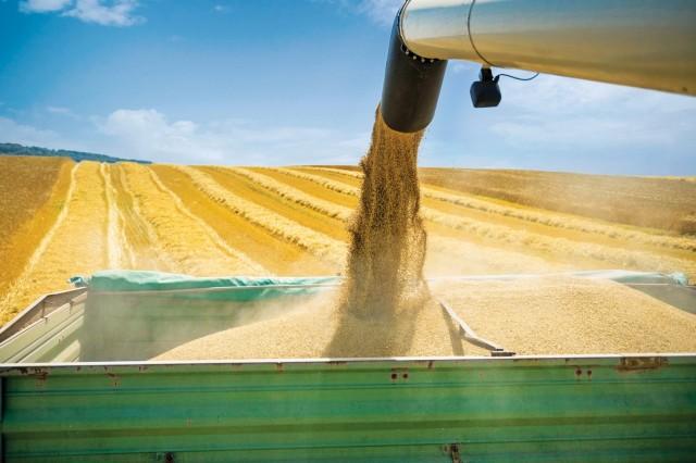 Ουκρανία: Κανονικά οι ροές σιτηρών προς την Κίνα