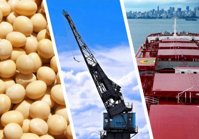 Βραζιλία: Οι τάσεις για τις εξαγωγές φασολιών σόγιας