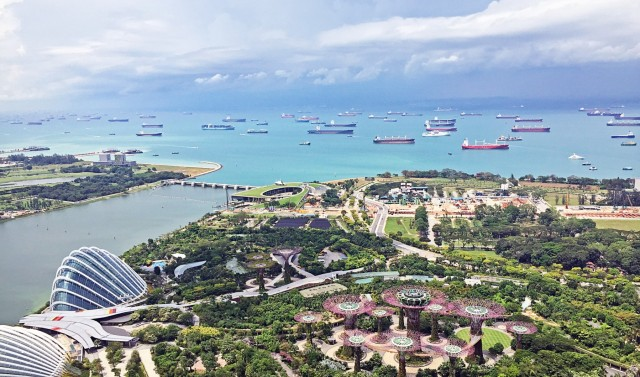 Σιγκαπούρη και sulphur cap: Τα μέχρι στιγμής δεδομένα