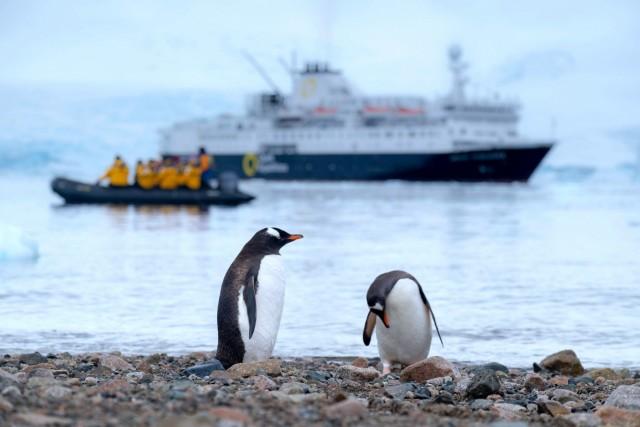 NASA: Έως και έξι φορές γρηγορότερα λιώνουν οι πάγοι στους πόλους