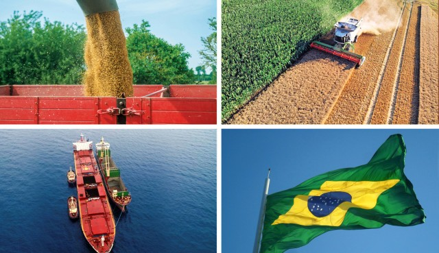Σόγια: Αυξημένες εξαγωγές από τη Βραζιλία