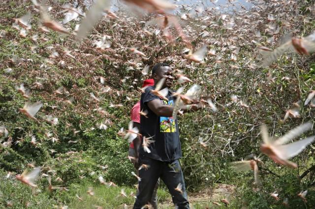 Ανατολική Αφρική: Υπό τον φόβο επισιτιστικής κρίσης 5 εκατ. άνθρωποι