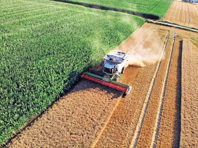 Πώς θα κινηθεί η παγκόσμια παραγωγή σόγιας