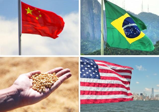 ΗΠΑ-Κίνα-Βραζιλία: Η αλληλένδετη σχέση στο θαλάσσιο εμπόριο σόγιας