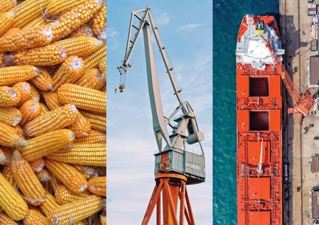 Αργεντινή: Προσωρινή αναστολή των εξαγωγών καλαμποκιού